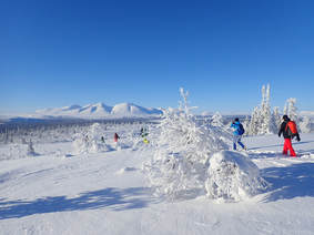Winter holiday in Norway